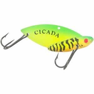 Bilde av Cicada Firetiger (1/4)  7.08 gram